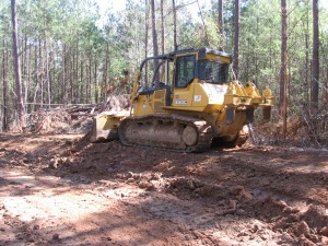 Building a road therough the Piney Woods of East Texas